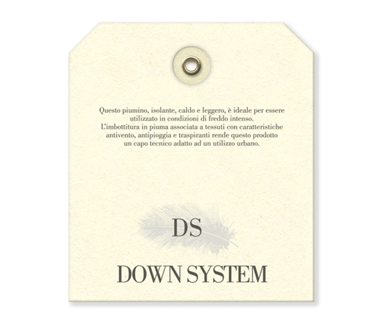 cp_tag_ist_downsystem